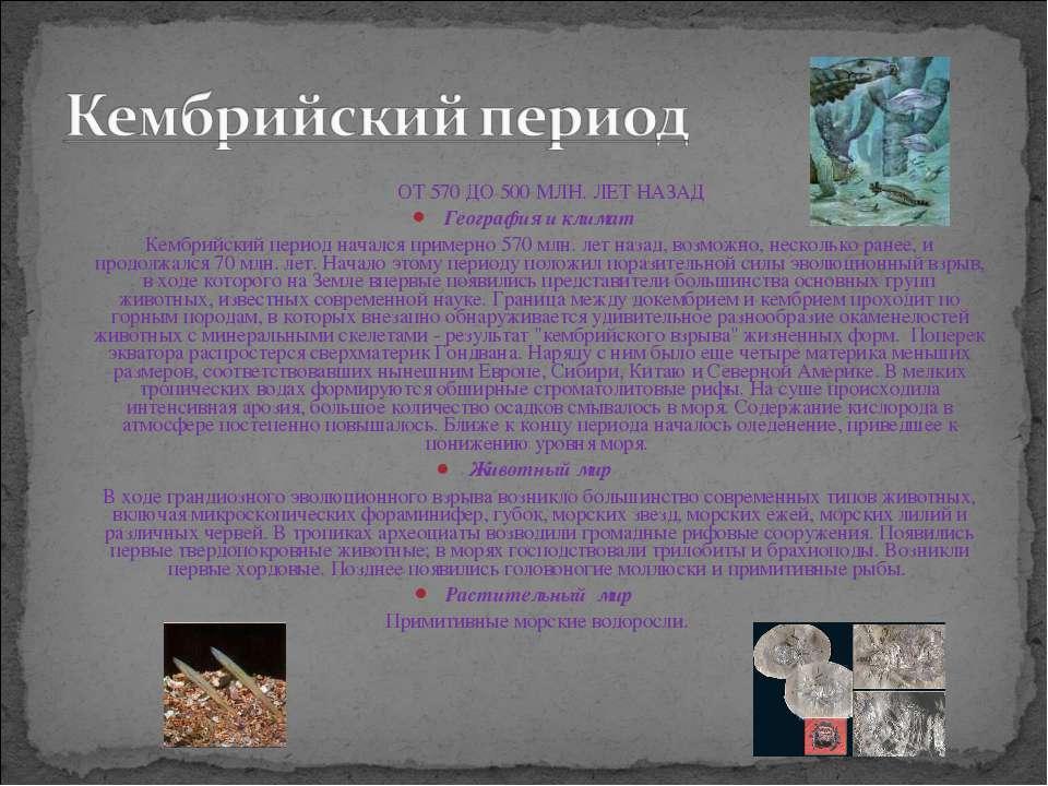 ОТ 570 ДО 500 МЛН. ЛЕТ НАЗАД География и климат Кембрийский период начался пр...