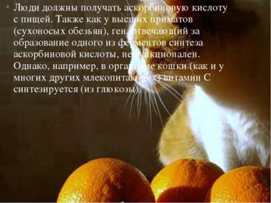 Люди должны получать аскорбиновую кислоту с пищей. Также как у высших примато...