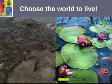 Choose the world to live!