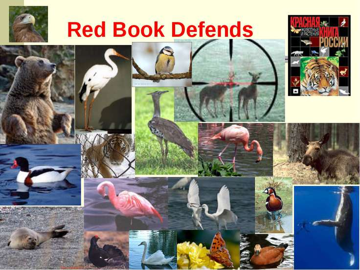 Red Book Defends