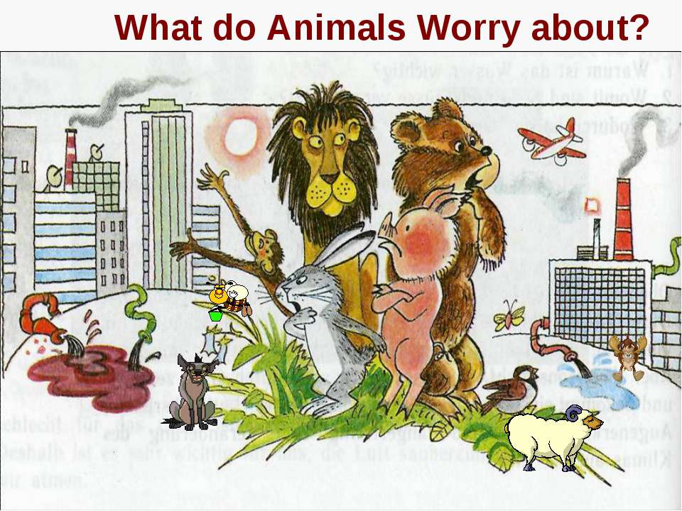 What do Animals Worry about?