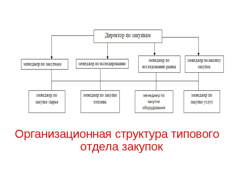 Организационная структура типового отдела закупок