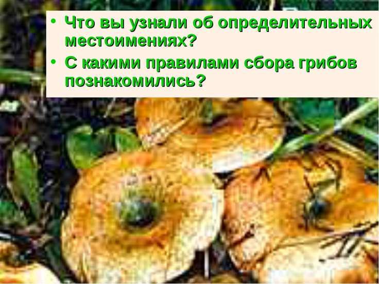 Что вы узнали об определительных местоимениях? С какими правилами сбора грибо...