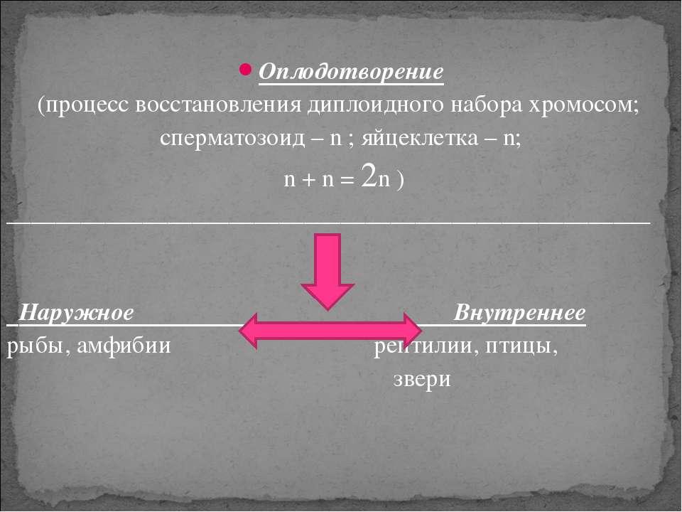 Оплодотворение (процесс восстановления диплоидного набора хромосом; сперматоз...
