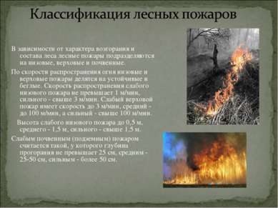 В зависимости от характера возгорания и состава леса лесные пожары подразделя...