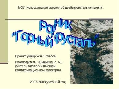 МОУ Новосамарская средняя общеобразовательная школа . Проект учащихся 6 класс...