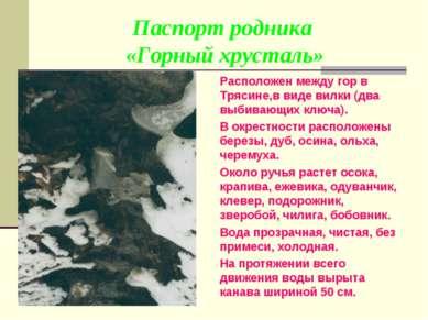 Паспорт родника «Горный хрусталь» Расположен между гор в Трясине,в виде вилки...