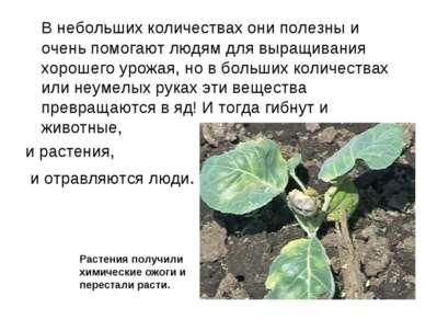 В небольших количествах они полезны и очень помогают людям для выращивания хо...