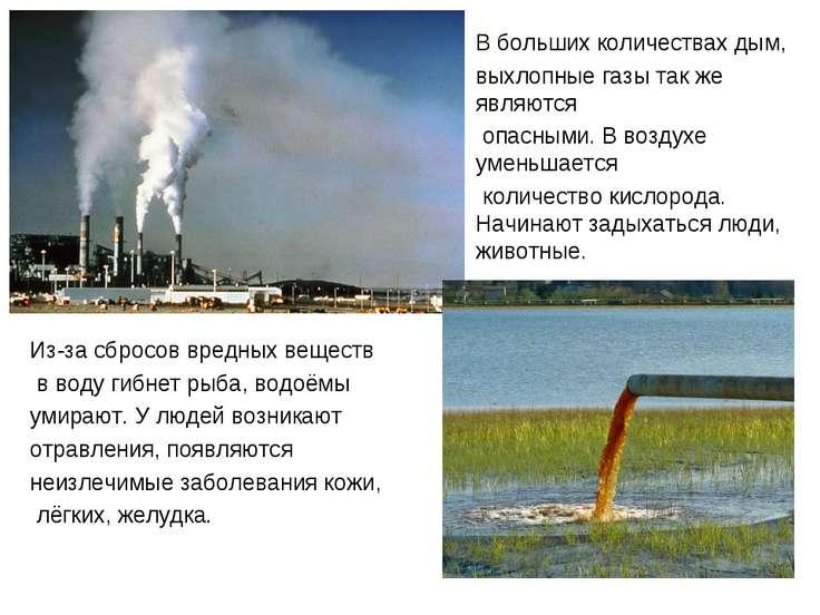 чч Из-за сбросов вредных веществ в воду гибнет рыба, водоёмы умирают. У людей...