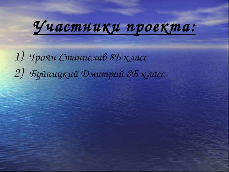 Участники проекта: Троян Станислав 8Б класс Буйницкий Дмитрий 8Б класс