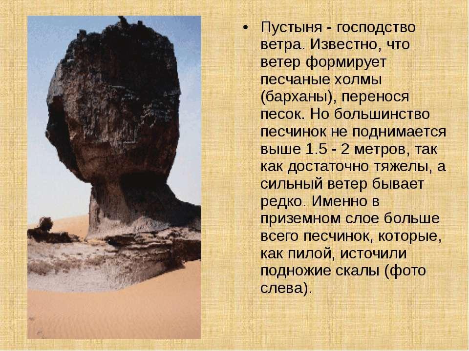 Пустыня - господство ветра. Известно, что ветер формирует песчаные холмы (бар...