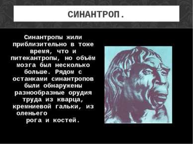 СИНАНТРОП. Синантропы жили приблизительно в тоже время, что и питекантропы, н...