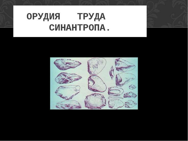 ОРУДИЯ ТРУДА СИНАНТРОПА.