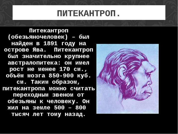 ПИТЕКАНТРОП. Питекантроп (обезьяночеловек) – был найден в 1891 году на остров...