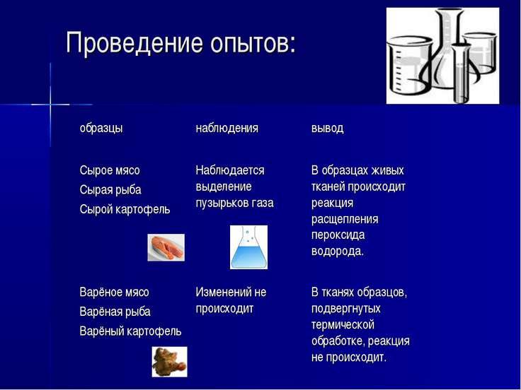 Проведение опытов: