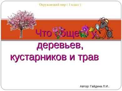 Окружающий мир ( 1 класс ) Что общего у деревьев, кустарников и трав Автор: Г...