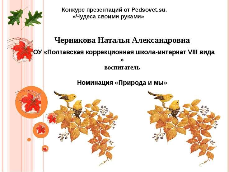 Черникова Наталья Александровна ГОУ «Полтавская коррекционная школа-интернат ...