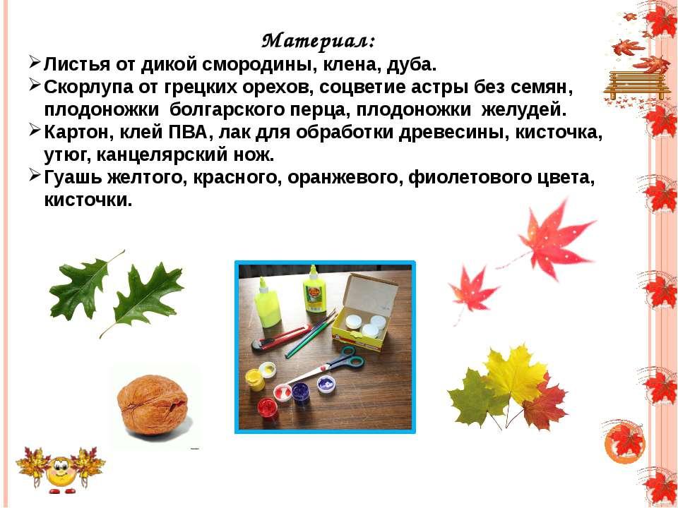 Материал: Листья от дикой смородины, клена, дуба. Скорлупа от грецких орехов,...