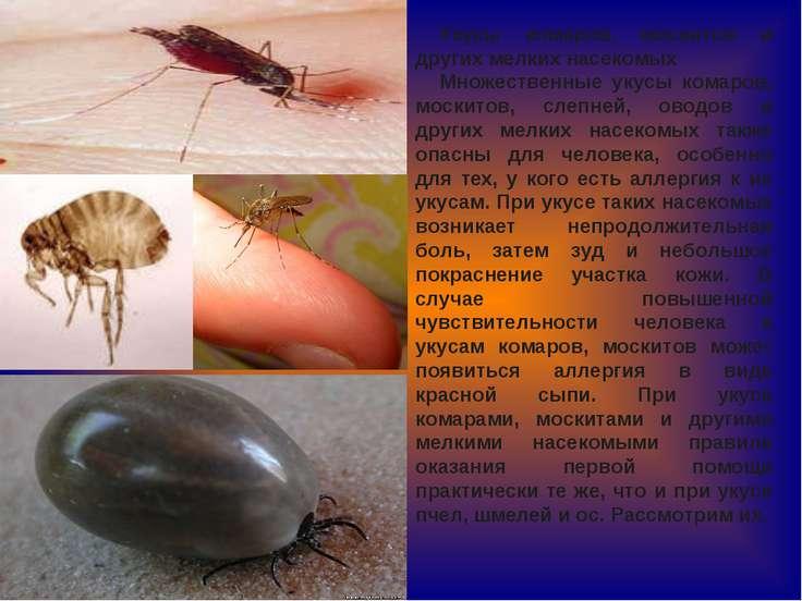 Укусы комаров, москитов и других мелких насекомых Множественные укусы комаров...