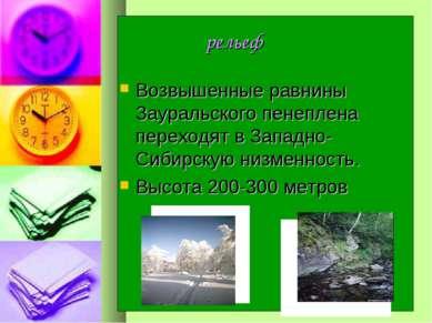 рельеф Возвышенные равнины Зауральского пенеплена переходят в Западно-Сибирск...