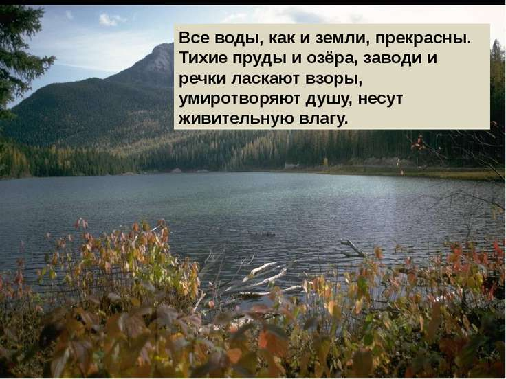 Все воды, как и земли, прекрасны. Тихие пруды и озёра, заводи и речки ласкают...