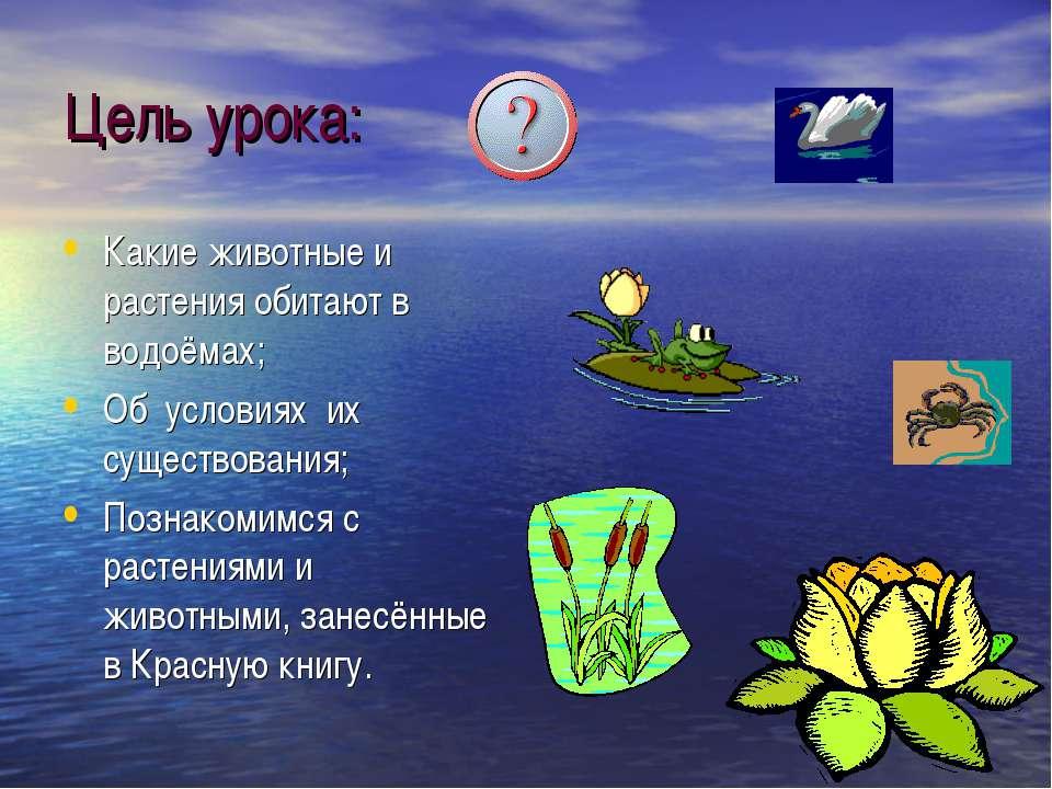 Цель урока: Какие животные и растения обитают в водоёмах; Об условиях их суще...
