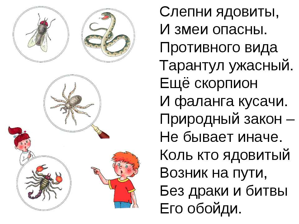 Слепни ядовиты, И змеи опасны. Противного вида Тарантул ужасный. Ещё скорпион...