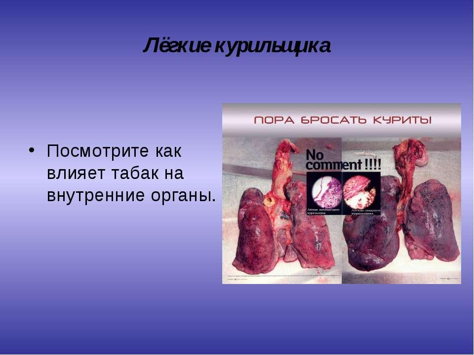 Лёгкие курильщика Посмотрите как влияет табак на внутренние органы.