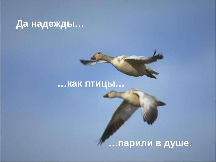 Да надежды… …как птицы… …парили в душе.