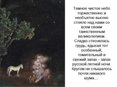 Темное чистое небо торжественно и необъятно высоко стояло над нами со всем св...