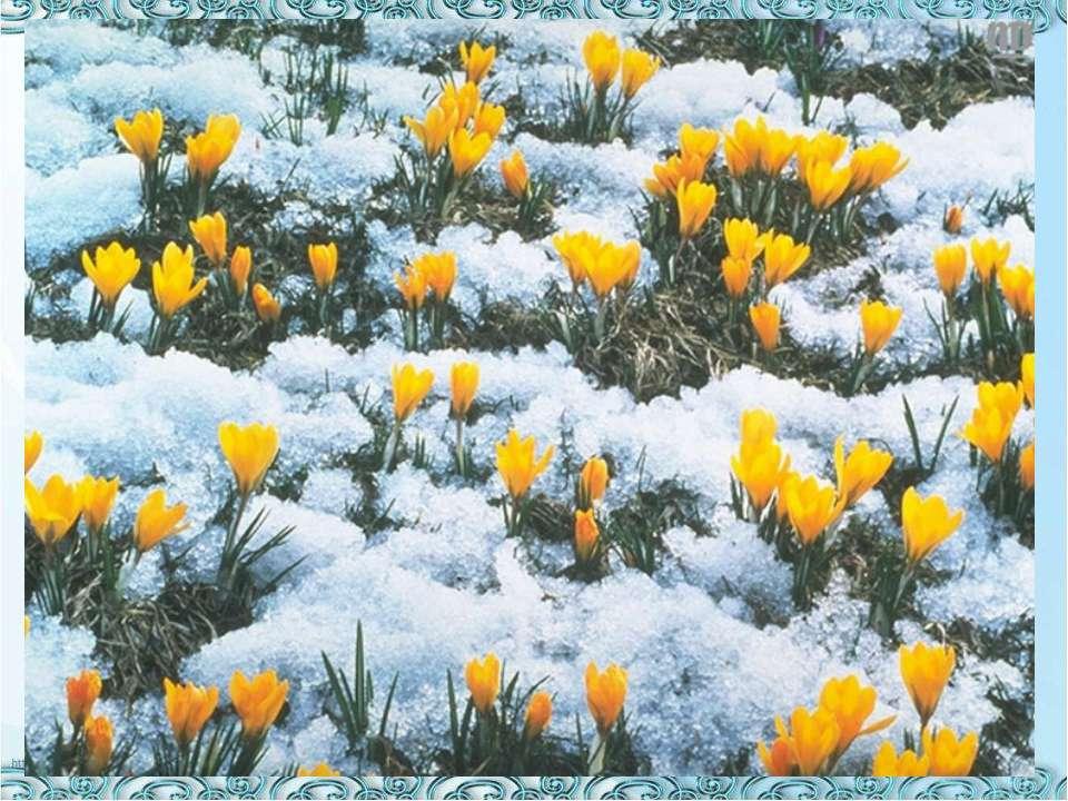 http://uslide.ru/images/11/17501/960/img3.jpg