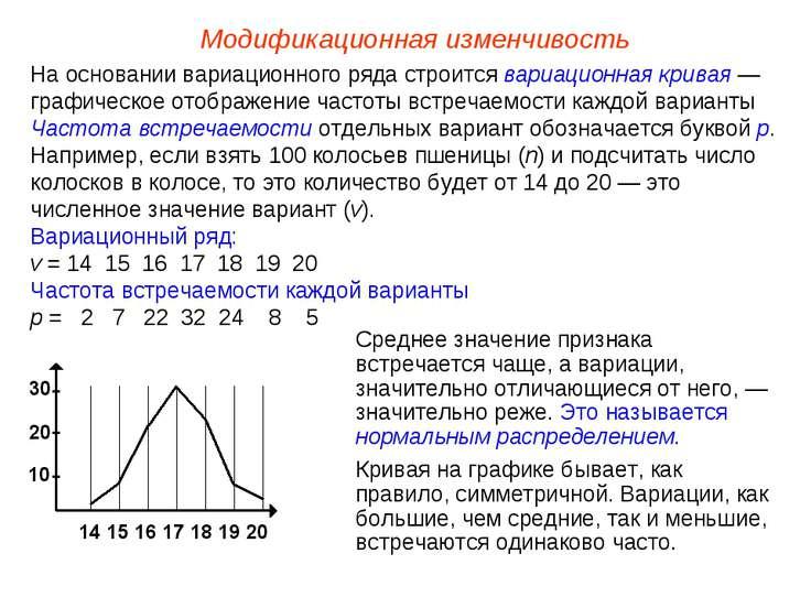 Модификационная изменчивость На основании вариационного ряда строится вариаци...