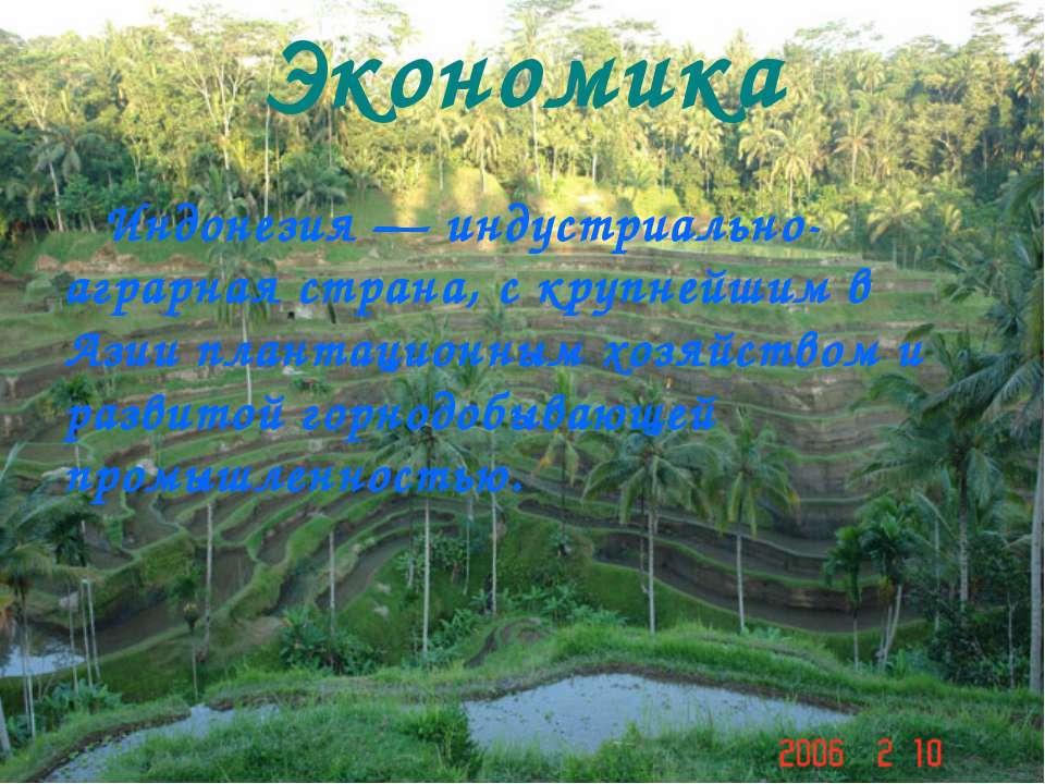 Экономика Индонезия — индустриально-аграрная страна, с крупнейшим в Азии план...