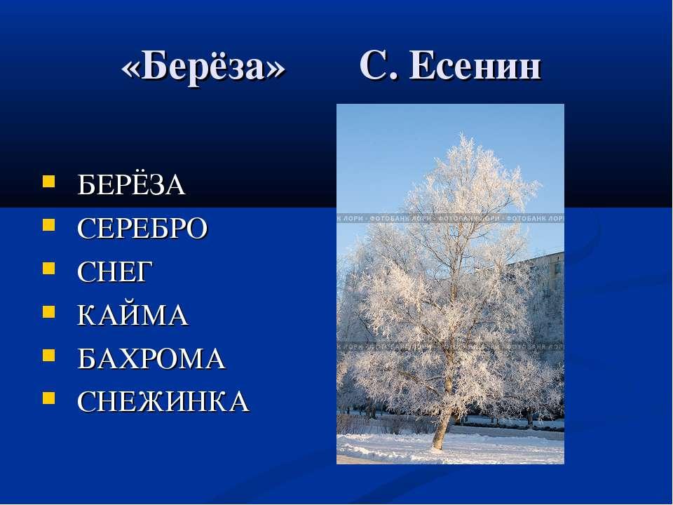 «Берёза» С. Есенин БЕРЁЗА СЕРЕБРО СНЕГ КАЙМА БАХРОМА СНЕЖИНКА