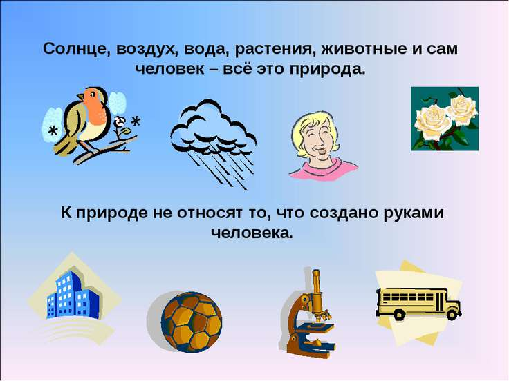 Солнце, воздух, вода, растения, животные и сам человек – всё это природа. К п...