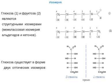 Изомерия.  Глюкоза (1) и фруктоза (2) являются структурными изомерами (межкл...