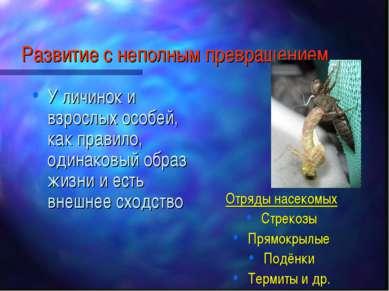 Развитие с неполным превращением У личинок и взрослых особей, как правило, од...