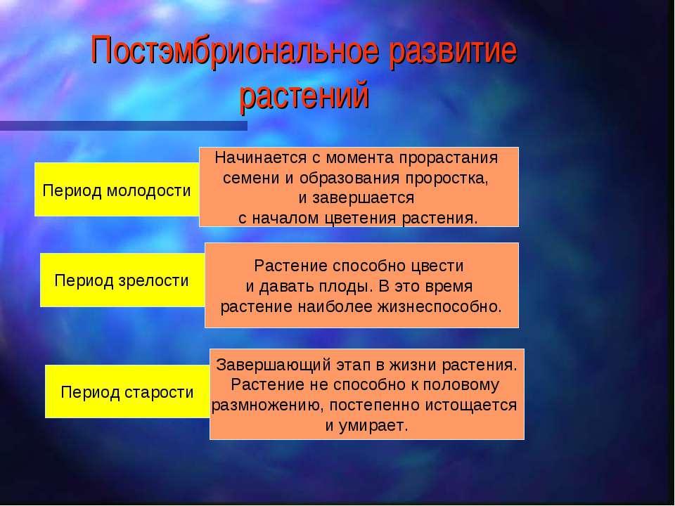 Постэмбриональное развитие растений Период молодости Период зрелости Период с...