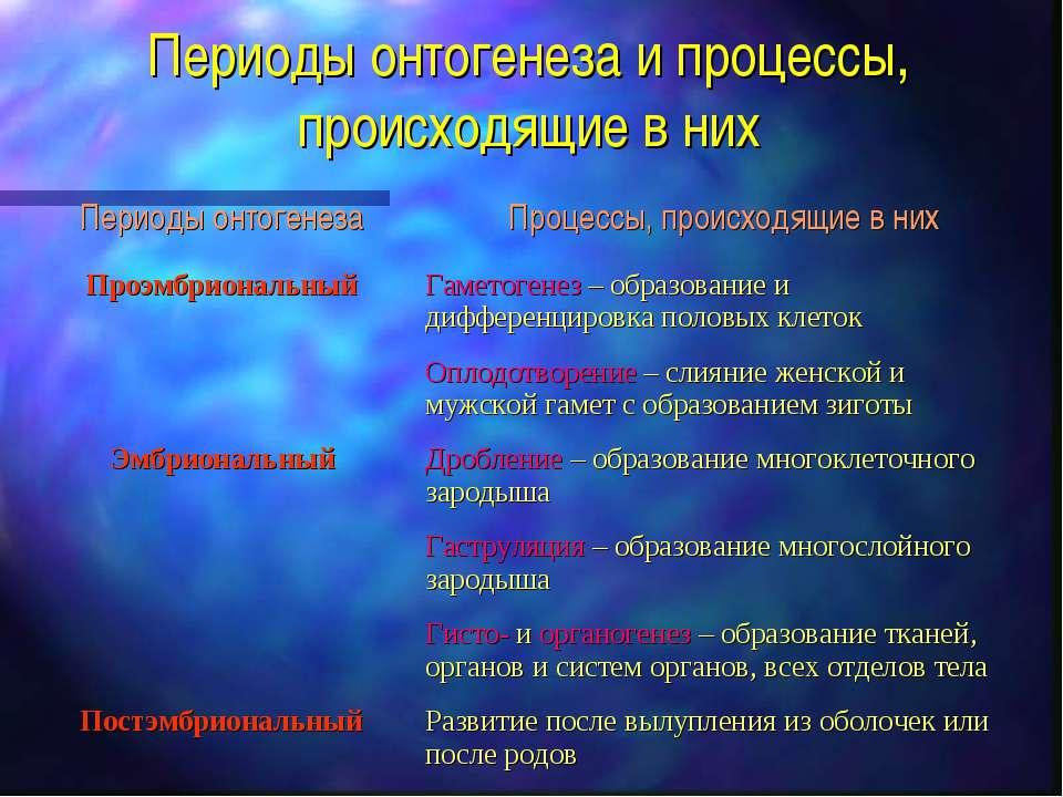Периоды онтогенеза и процессы, происходящие в них
