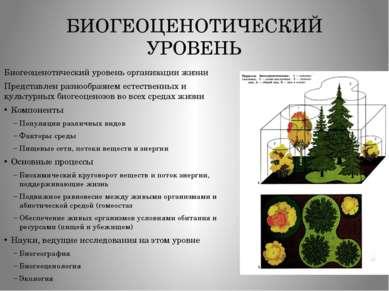 БИОГЕОЦЕНОТИЧЕСКИЙ УРОВЕНЬ Биогеоценотический уровень организации жизни Предс...