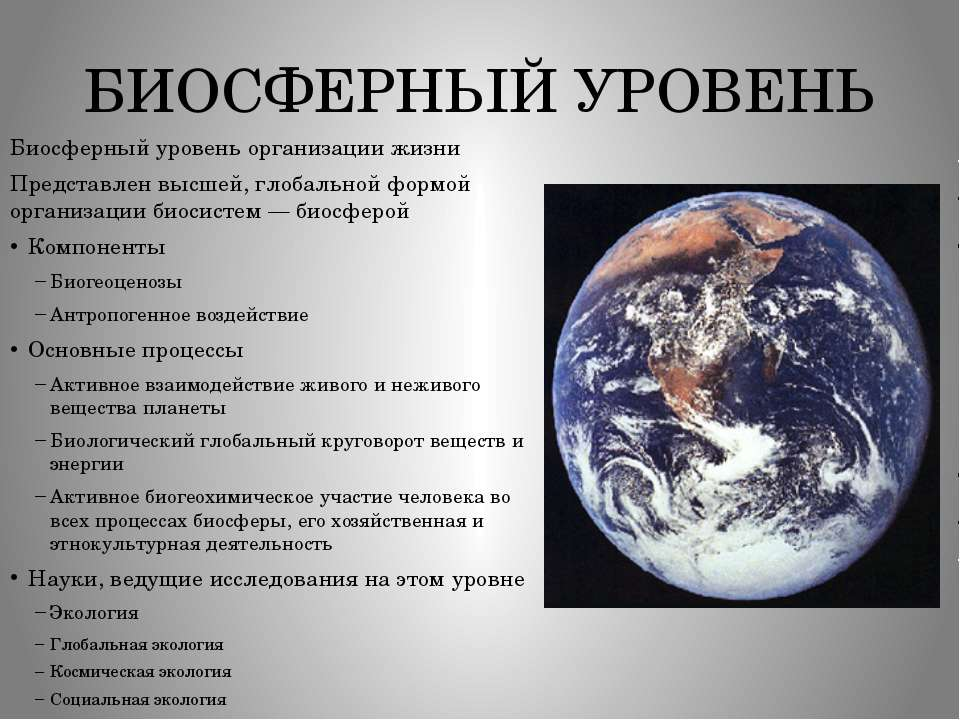БИОСФЕРНЫЙ УРОВЕНЬ Биосферный уровень организации жизни Представлен высшей, г...