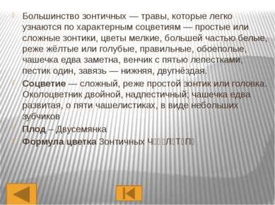 Представители Яблоня Слива Роза Вишня