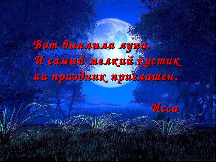 Вот выплыла луна, И самый мелкий кустик на праздник приглашен. Исса