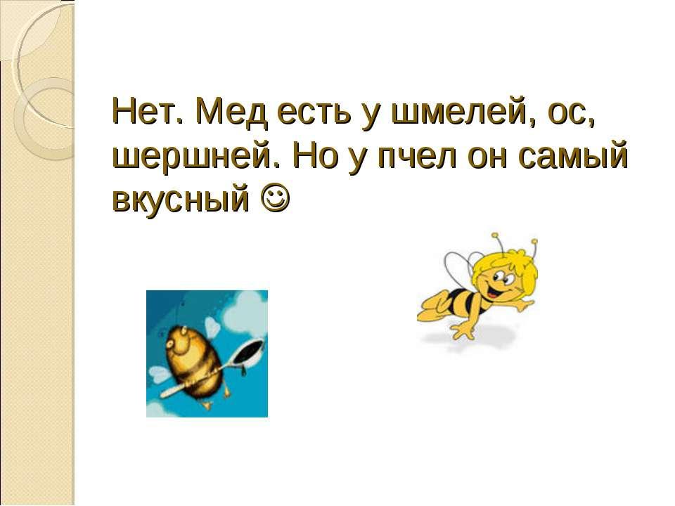 Нет. Мед есть у шмелей, ос, шершней. Но у пчел он самый вкусный