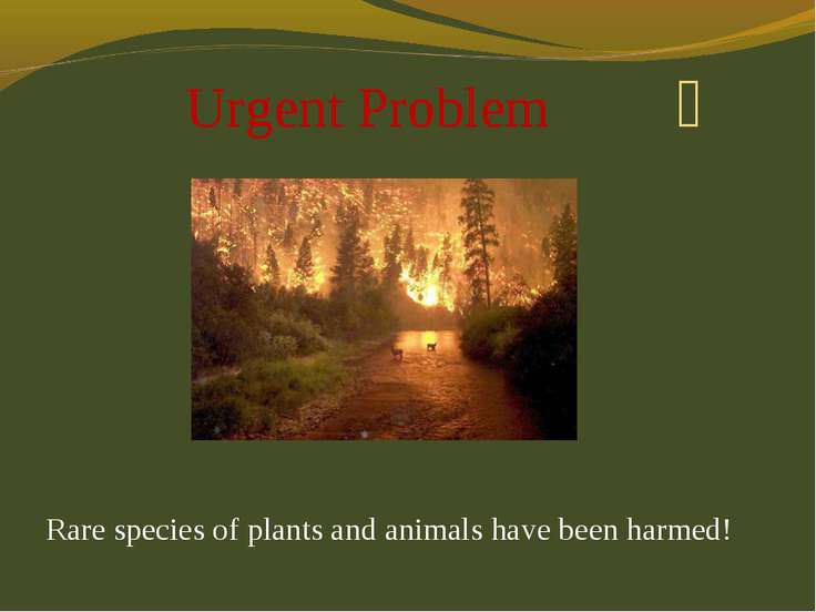 Urgent Problem Rare species of plants and animals have been harmed!
