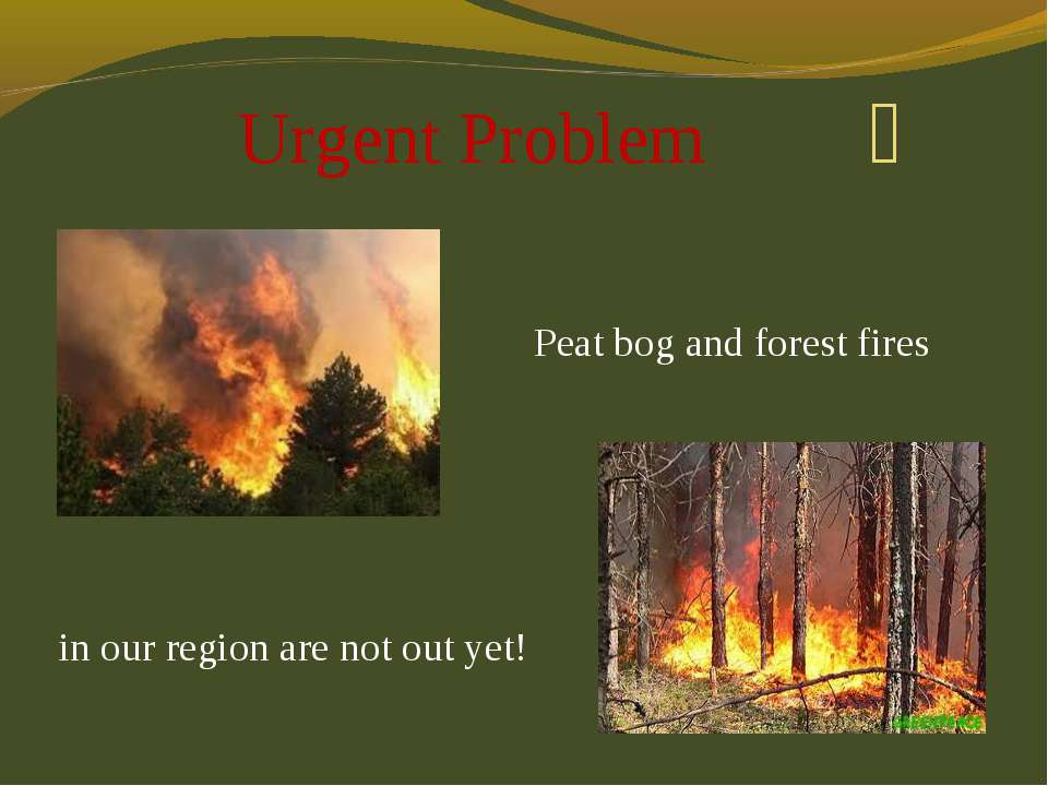 Urgent Problem Peat bog and forest fires in our region are not out yet!