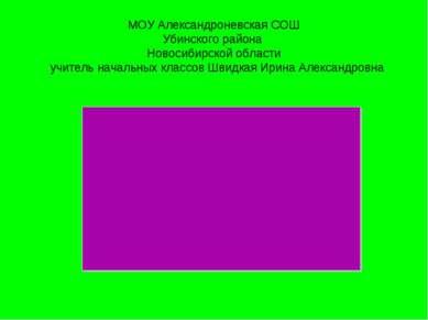 МОУ Александроневская СОШ Убинского района Новосибирской области учитель нача...