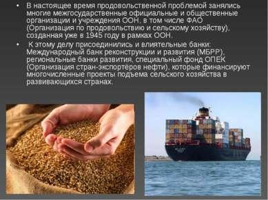 В настоящее время продовольственной проблемой занялись многие межгосударствен...