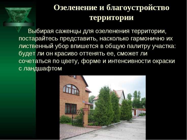 Озеленение и благоустройство территории Выбирая саженцы для озеленения террит...