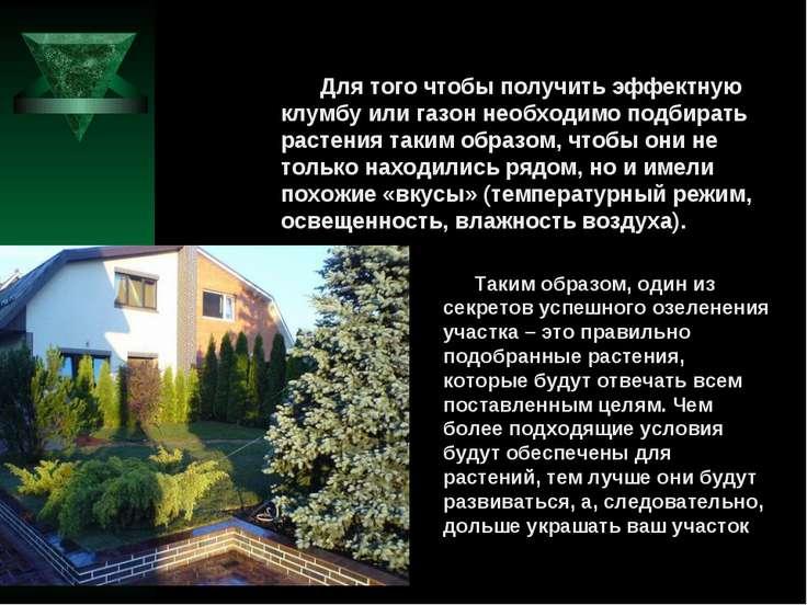 Для того чтобы получить эффектную клумбу или газон необходимо подбирать расте...